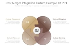 Post Merger Integration Culture Example Of Ppt