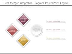 Post Merger Integration Diagram Powerpoint Layout