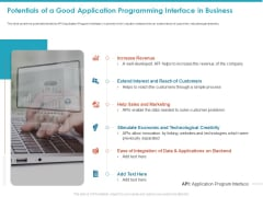 Potentials Of A Good Application Programming Interface In Business Brochure PDF