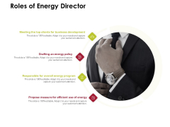 Power Management System And Technology Roles Of Energy Director Ppt PowerPoint Presentation Portfolio Layout PDF