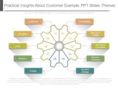 Practical Insights About Customer Example Ppt Slides Themes