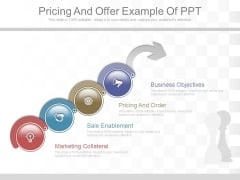 Pricing And Offer Example Of Ppt