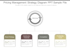 Pricing Management Strategy Diagram Ppt Sample File