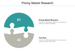 Pricing Market Research Ppt PowerPoint Presentation Model Portrait Cpb