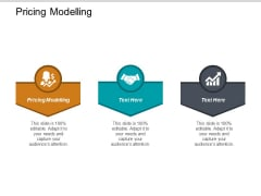 Pricing Modelling Ppt PowerPoint Presentation Summary Gridlines Cpb