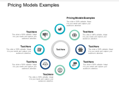 Pricing Models Examples Ppt PowerPoint Presentation Model Information Cpb