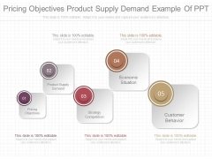 Pricing Objectives Product Supply Demand Example Of Ppt