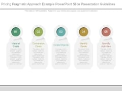 Pricing Pragmatic Approach Example Powerpoint Slide Presentation Guidelines
