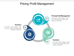 Pricing Profit Management Ppt PowerPoint Presentation Model Skills Cpb