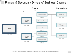 Primary And Secondary Drivers Of Business Change Ppt PowerPoint Presentation Summary Sample
