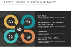 Primary Purpose Of External Audit System Ppt PowerPoint Presentation Rules