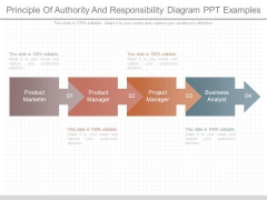 Principle Of Authority And Responsibility Diagram Ppt Examples