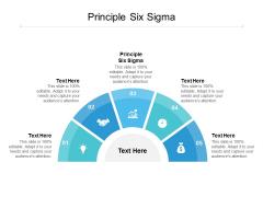 Principle Six Sigma Ppt PowerPoint Presentation Slides Inspiration Cpb