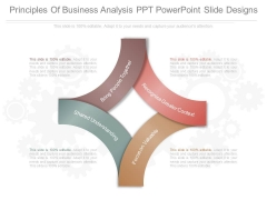 Principles Of Business Analysis Ppt Powerpoint Slide Designs