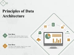 Principles Of Data Architecture Ppt PowerPoint Presentation Inspiration