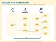 Prioritization Techniques For Software Development And Testing Our Agile Team Structure Manager Demonstration PDF