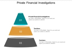 Private Financial Investigations Ppt PowerPoint Presentation Pictures Summary Cpb