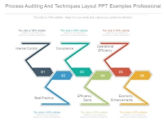 Process Auditing And Techniques Layout Ppt Examples Professional