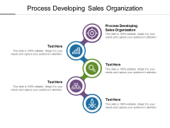 Process Developing Sales Organization Ppt PowerPoint Presentation Gallery Outfit Cpb