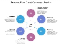 Process Flow Chart Customer Service Ppt PowerPoint Presentation Summary Elements Cpb