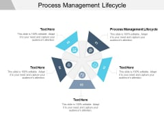 Process Management Lifecycle Ppt PowerPoint Presentation Inspiration Infographic Template Cpb