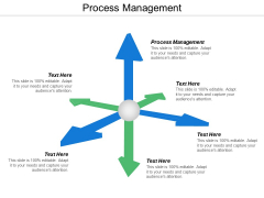 Process Management Ppt Powerpoint Presentation Portfolio Clipart Images Cpb