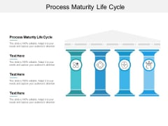 Process Maturity Life Cycle Ppt PowerPoint Presentation Summary Visual Aids Cpb