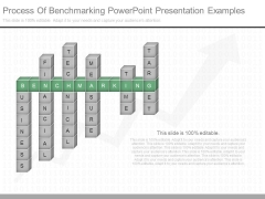 Process Of Benchmarking Powerpoint Presentation Examples