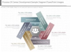 Process Of Career Development Sample Diagram Powerpoint Images