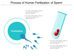 Process Of Human Fertilization Of Sperm Ppt Powerpoint Presentation Styles Inspiration