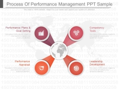 Process Of Performance Management Ppt Sample