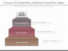 Process Of Subdividing A Market Powerpoint Slides