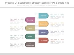 Process Of Sustainable Strategy Sample Ppt Sample File