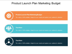 Product Launch Plan Marketing Budget Ppt PowerPoint Presentation Inspiration Aids Cpb