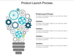 Product Launch Process Ppt PowerPoint Presentation Infographic Template Maker Cpb