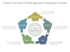 Product Life Cycle For Web Application Presentation Pictures