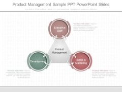 Product Management Sample Ppt Powerpoint Slides