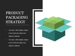 Product Packaging Strategy Template 2 Ppt PowerPoint Presentation Graphics