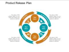 Product Release Plan Ppt PowerPoint Presentation Professional Designs Cpb