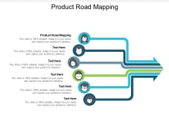 Product Road Mapping Ppt PowerPoint Presentation Gallery Graphics Download Cpb