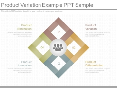 Product Variation Example Ppt Sample