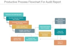 Productive Process Flowchart For Audit Report Ppt PowerPoint Presentation Samples