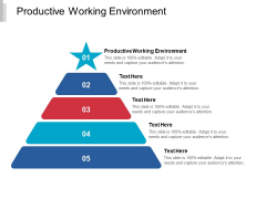Productive Working Environment Ppt PowerPoint Presentation Visual Aids Diagrams Cpb