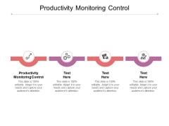 Productivity Monitoring Control Ppt PowerPoint Presentation Ideas Icons Cpb