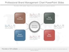 Professional Brand Management Chart Powerpoint Slides