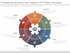 Professional Business Plan Diagram Ppt Slides Templates
