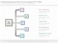 Professional Business Plan Services Diagram Ppt Slides
