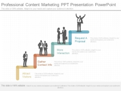 Professional Content Marketing Ppt Presentation Powerpoint