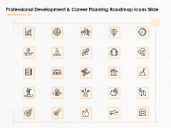 Professional Development And Career Planning Roadmap Icons Slide Ppt Infographics Format PDF