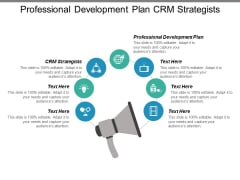 Professional Development Plan Crm Strategists Ppt PowerPoint Presentation Inspiration Show